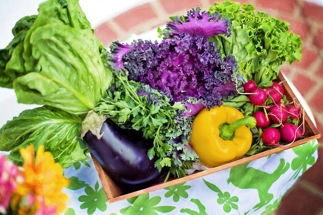 8 Sayuran Terbaik untuk Diet yang Menakjubkan