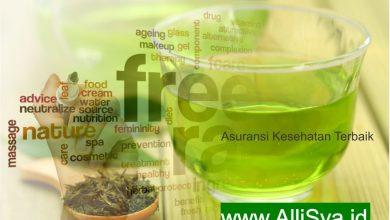 Photo of Manfaat Teh Hijau Sebagai Minuman Kesehatan Herbal