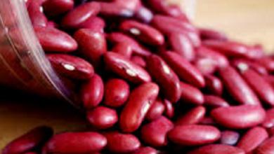 Photo of 5 Manfaat Kacang Merah Untuk Kesehatan Badan