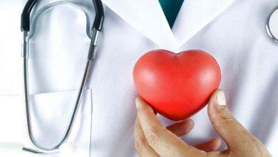 Photo of Berbagai Jenis Penyakit Hati yang Berbahaya dan Perlu Diwaspadai