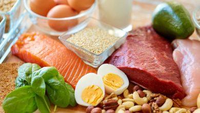 Photo of Protein Nabati dan Protein Hewani apa bedanya ?